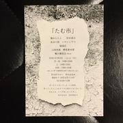 たむ市 (800x800).jpg